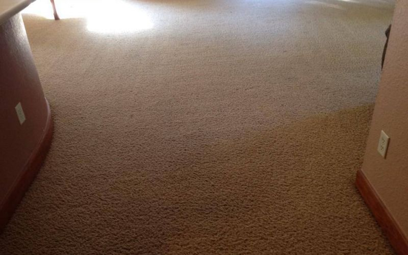 Our flooring services vans carpet upholstery cleaning service vans carpet upholstery cleaning service 12 step cleaning process will leave your carpet spot free and dry in just a few hours solutioingenieria Gallery